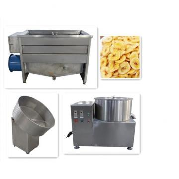 Semi-automatic Banana Chips Processing Line