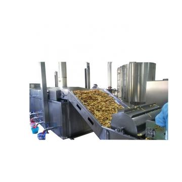 Automatic Banana Chips Processing Line