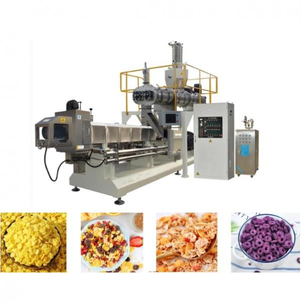 China Factory Supply Small Breakfast Corn Cereal Flakes Making Extruder Machine #1 image