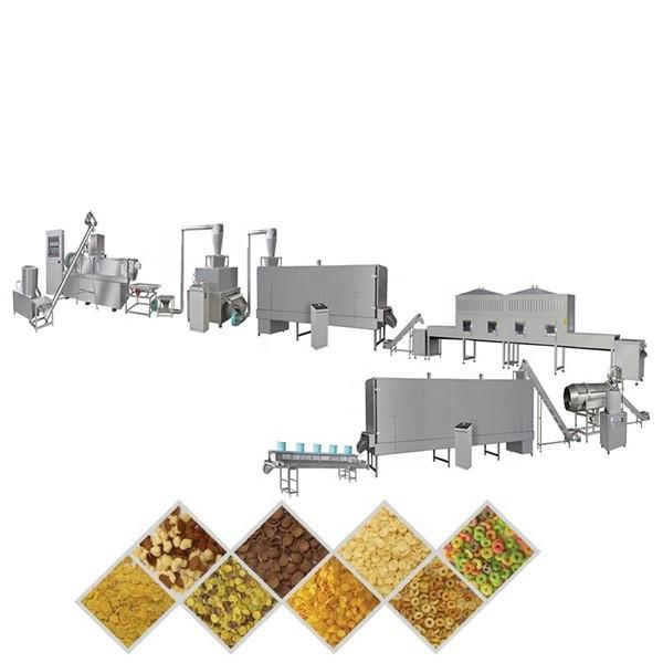 Ce ISO9001 Automatic Corn Flakes Production Machinery Puffed Cereals Breakfast Food Extrusion Line Bulking Expanding Equipment Processing Machine #2 image
