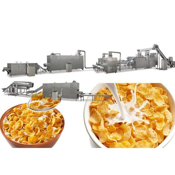 China Factory Supply Small Breakfast Corn Cereal Flakes Making Extruder Machine #2 image